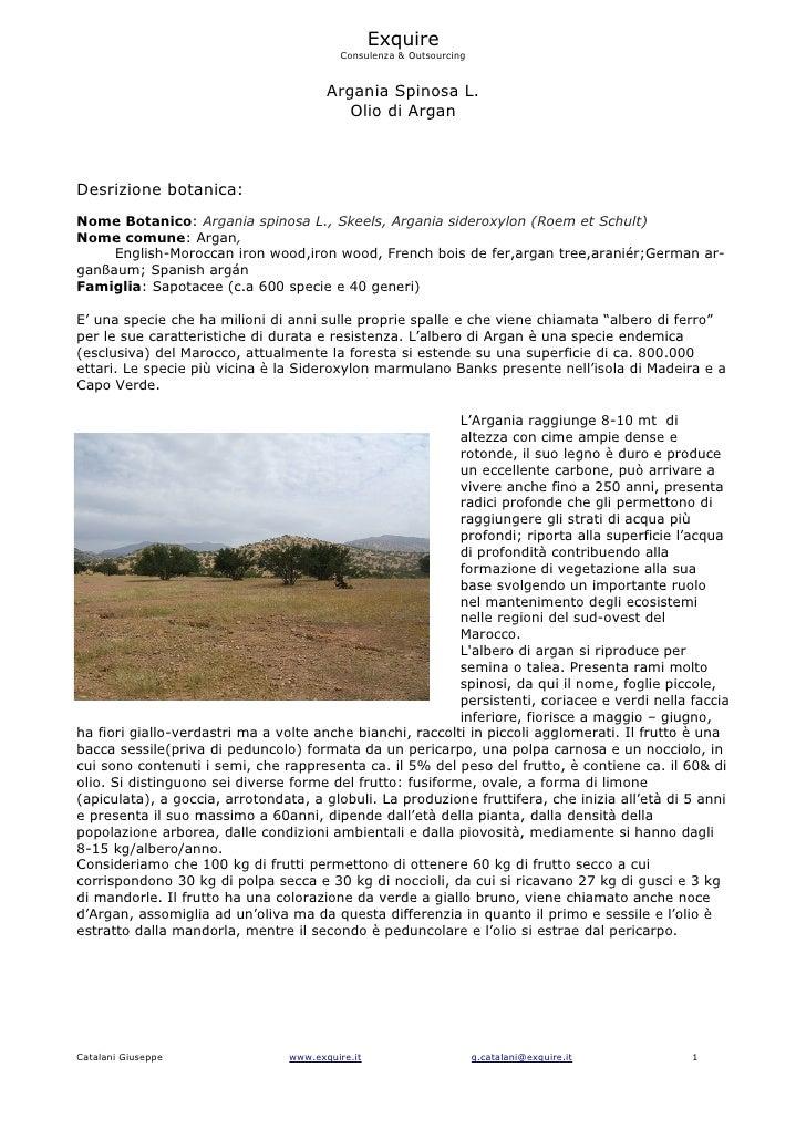 Exquire                                          Consulenza & Outsourcing                                          Argania...