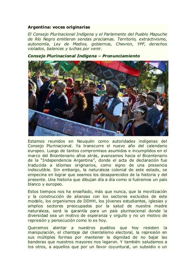 Argentina: voces originarias El Consejo Plurinacional Indígena y el Parlamento del Pueblo Mapuche de Río Negro emitieron s...