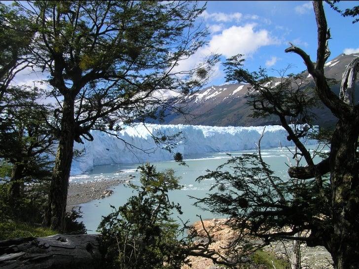 Argentine (Glaciares Patagonia Argentina)