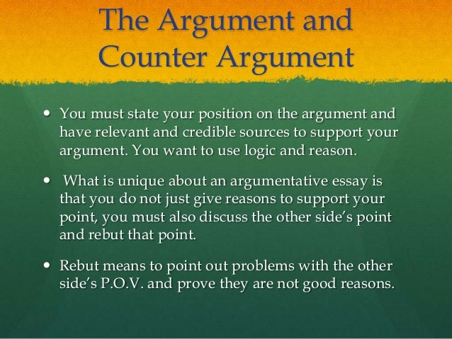 What is in an argument essay