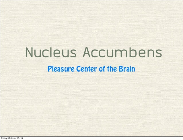 Nucleus Accumbens Pleasure Center of the Brain  Friday, October 18, 13
