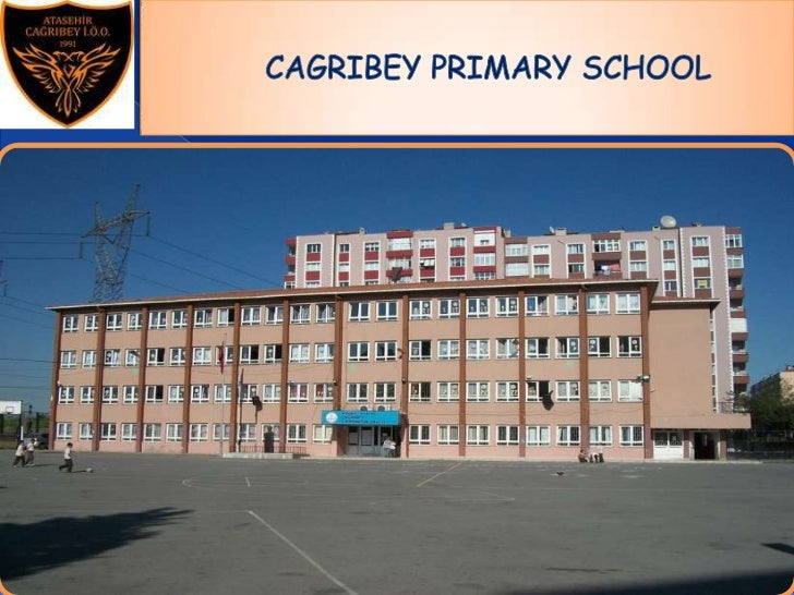 Our school is located in Ataşehir,Istanbul     which hosted many cultures and     civilizations throughout history.