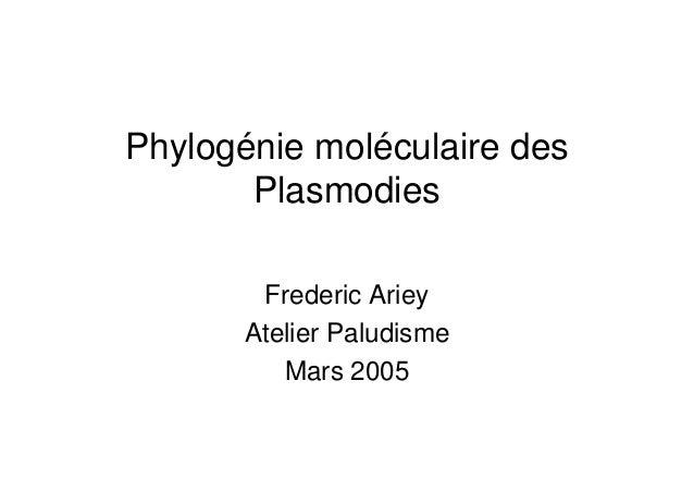 Phylogénie moléculaire des       Plasmodies        Frederic Ariey       Atelier Paludisme          Mars 2005