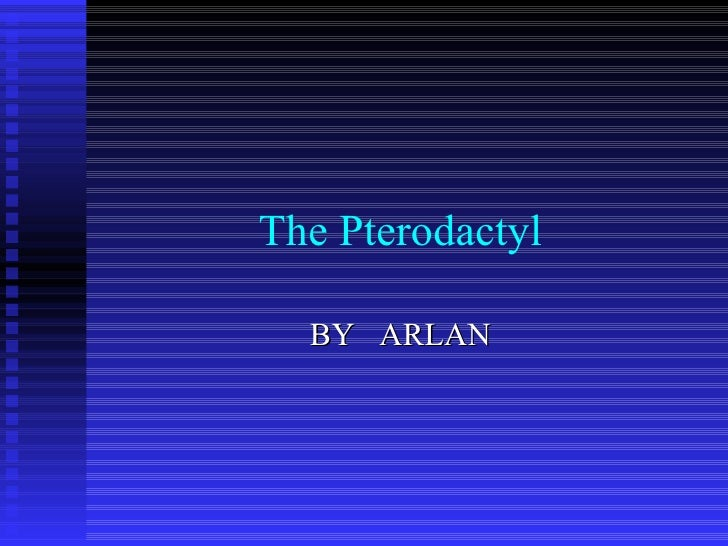 The Pterodactyl BY  ARLAN