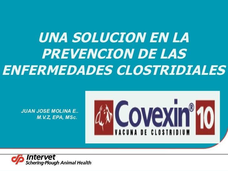 Armonizada covexin intervet s.p. MSD Finca Productiva Salud Del Hato