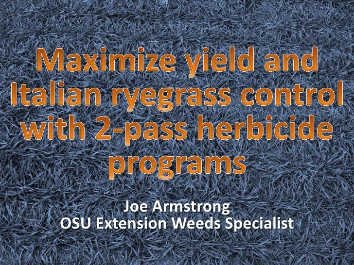 Maximize yield and Italian ryegrass control with 2-pass herbicide programs<br />Joe ArmstrongOSU Extension Weeds Specialis...