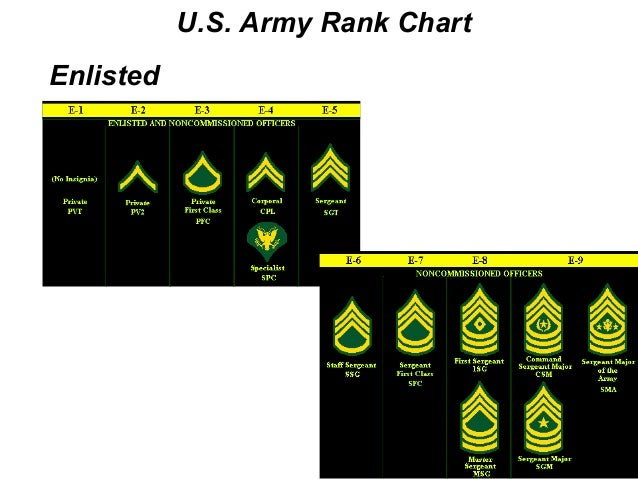 army rank structure United states military rank structure for the air force, army, marines, navy, national guard and coast guard insignia - military rank find this pin and more on military rank structure charts by aviationhd.