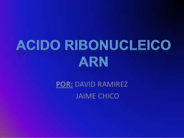 POR: DAVID RAMIREZ     JAIME CHICO