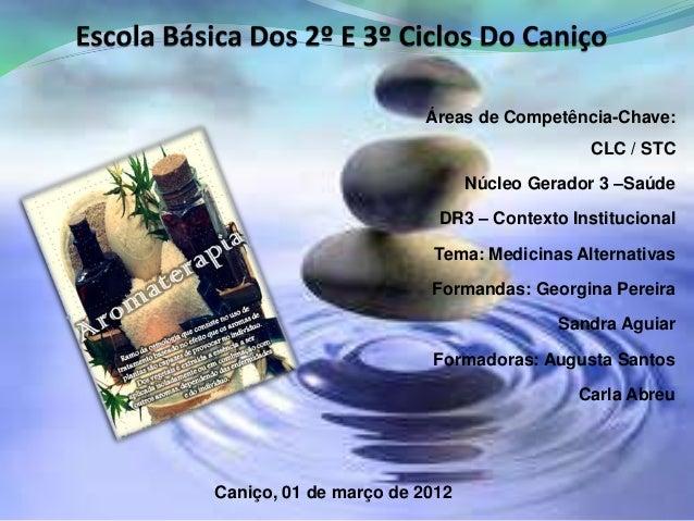 Áreas de Competência-Chave: CLC / STC Núcleo Gerador 3 –Saúde DR3 – Contexto Institucional Tema: Medicinas Alternativas Fo...