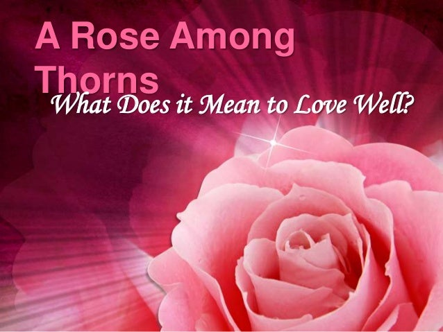 A Rose AmongThornsWhat Does it Mean to Love Well?