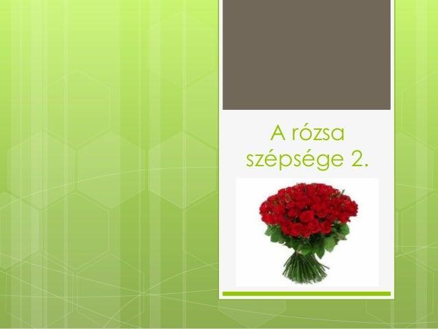 A rózsaszépsége 2.