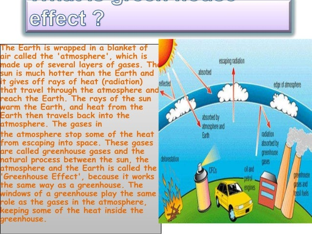 Global warming essay: environmental effects :: environment