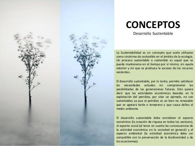 Arquitectura sustentable estefany familia heury gonzalez for Concepto de arquitectura