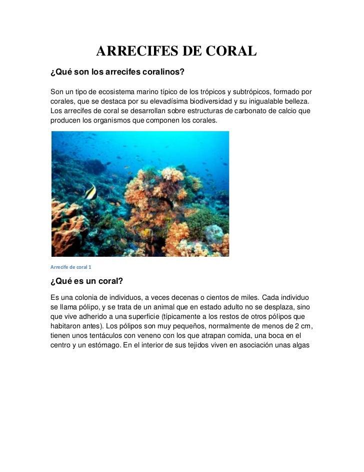ARRECIFES DE CORAL¿Qué son los arrecifes coralinos?Son un tipo de ecosistema marino típico de los trópicos y subtrópicos, ...