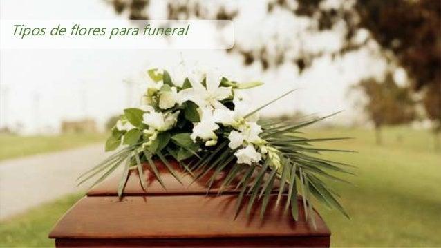 Tipos de flores para funeral