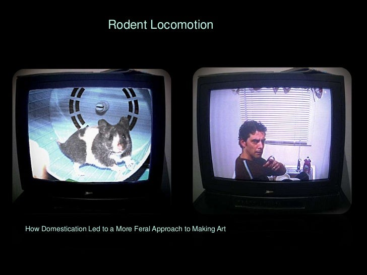Rodent Locomotion<br />How Domestication Led to a More Feral Approach to Making Art <br />