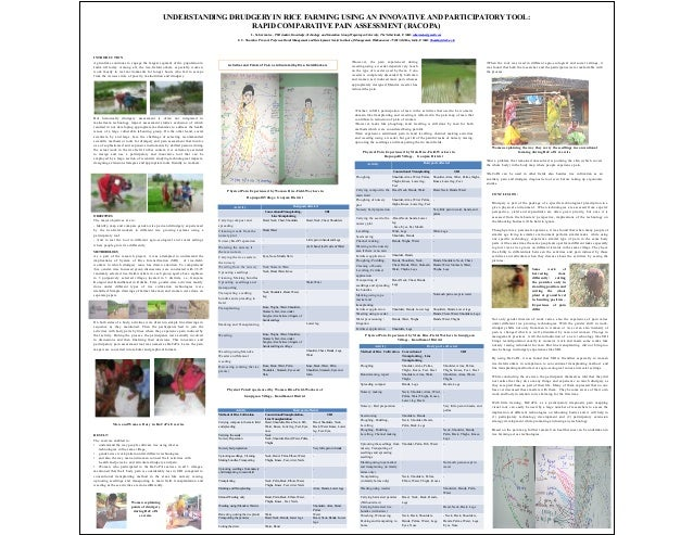 UNDERSTANDING DRUDGERY IN RICE FARMING USING AN INNOVATIVE AND PARTICIPATORY TOOL: RAPID COMPARATIVE PAIN ASSESSMENT (RACO...