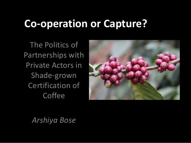 Co-operation or Capture? The Politics of Partnerships with Private Actors in Shade-grown Certification of Coffee Arshiya B...