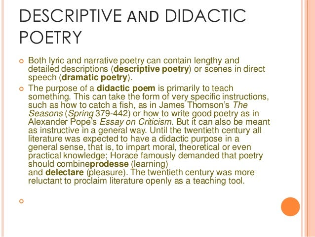Didactic Essay Example