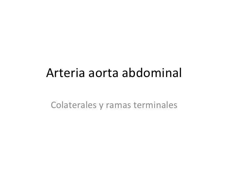 Arteria aorta abdominal Colaterales y ramas terminales