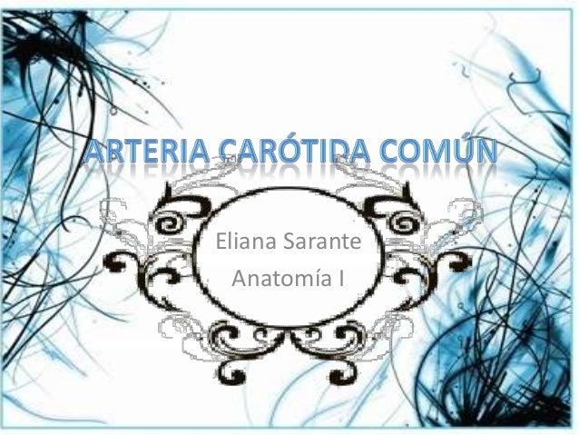 Eliana Sarante Anatomía I