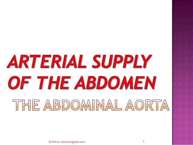 Arterial supply of the abdomen  aorta.ppt