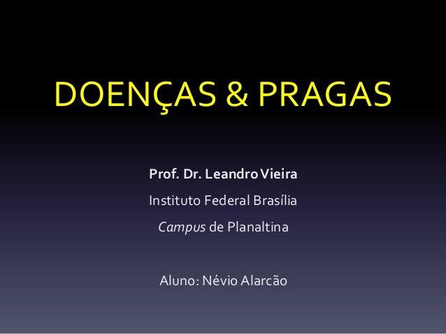 DOENÇAS & PRAGAS    Prof. Dr. Leandro Vieira    Instituto Federal Brasília     Campus de Planaltina     Aluno: Névio Alarcão