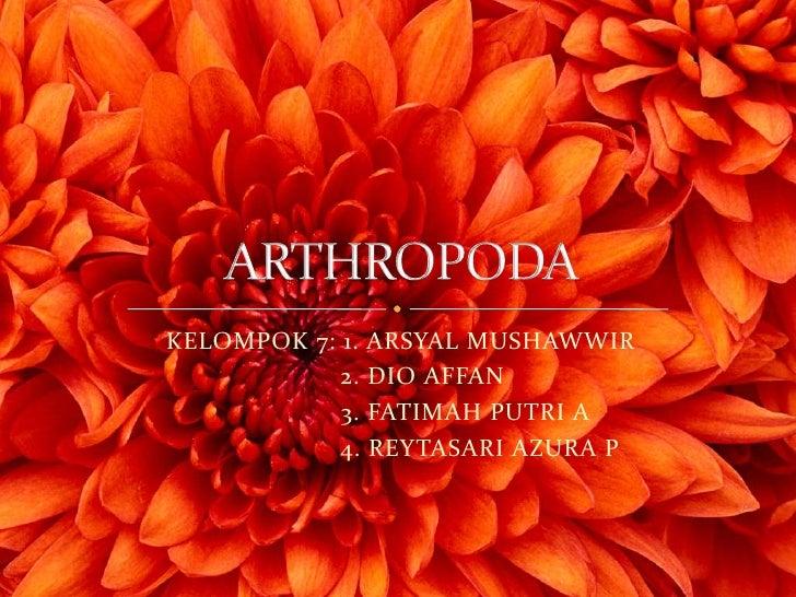 Arthropoda (2)   copy