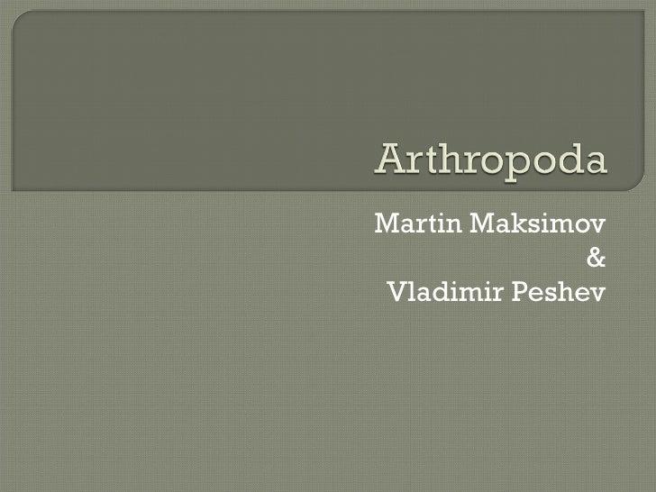 Martin Maksimov & Vladimir Peshev