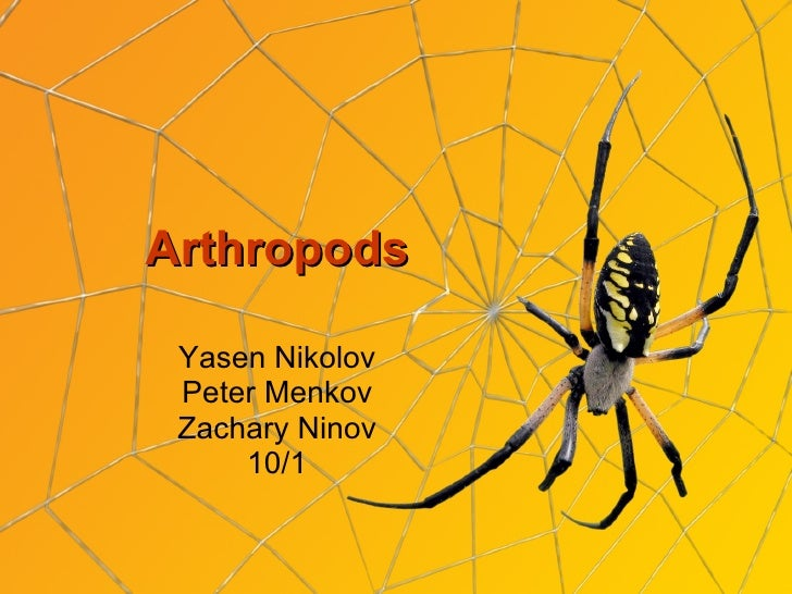Arthropods 10 1 peter yasen zahari