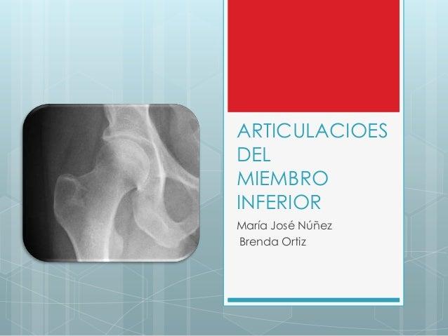 ARTICULACIOESDELMIEMBROINFERIORMaría José NúñezBrenda Ortiz
