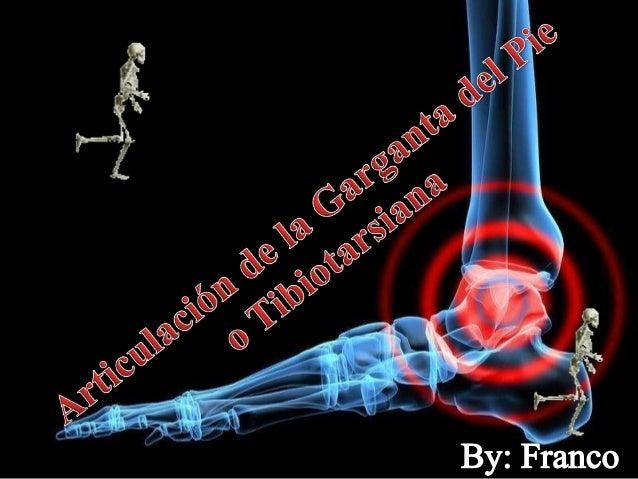 By: Franco Rodríguez