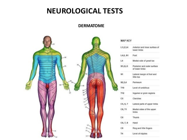neurological tests