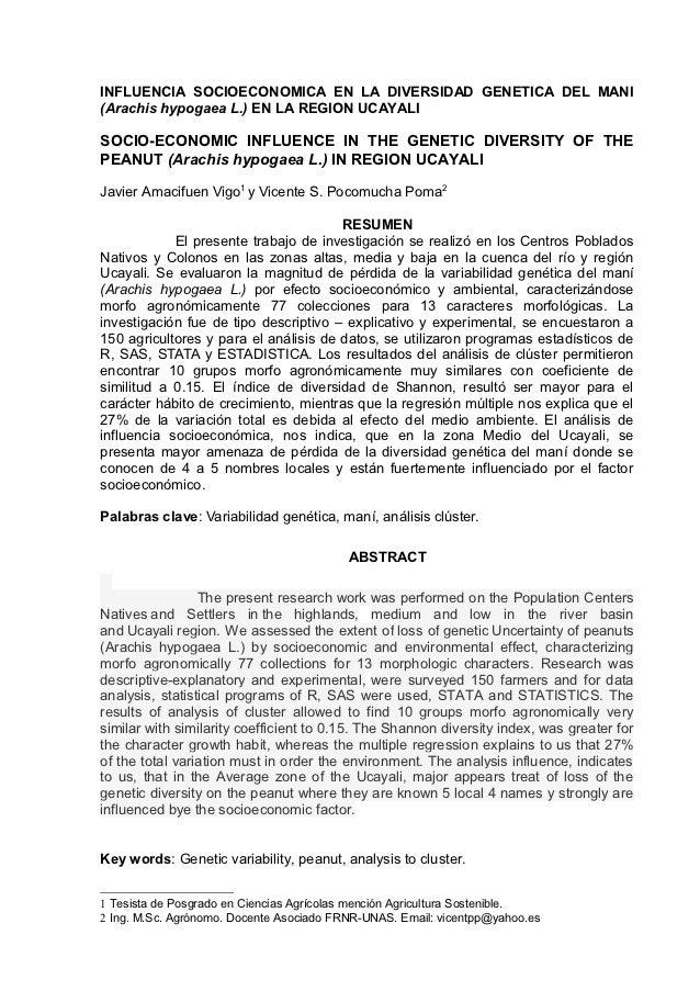 INFLUENCIA SOCIOECONOMICA EN LA DIVERSIDAD GENETICA DEL MANI(Arachis hypogaea L.) EN LA REGION UCAYALISOCIO-ECONOMIC INFLU...