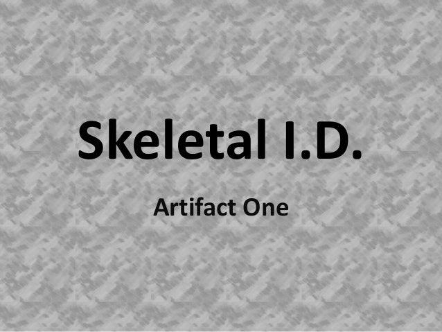 Skeletal I.D.   Artifact One