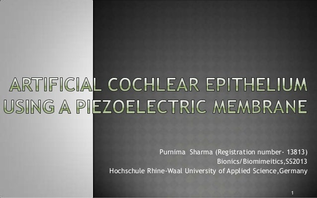 Artificial cochlear epithelium using a piezoelectric membrane