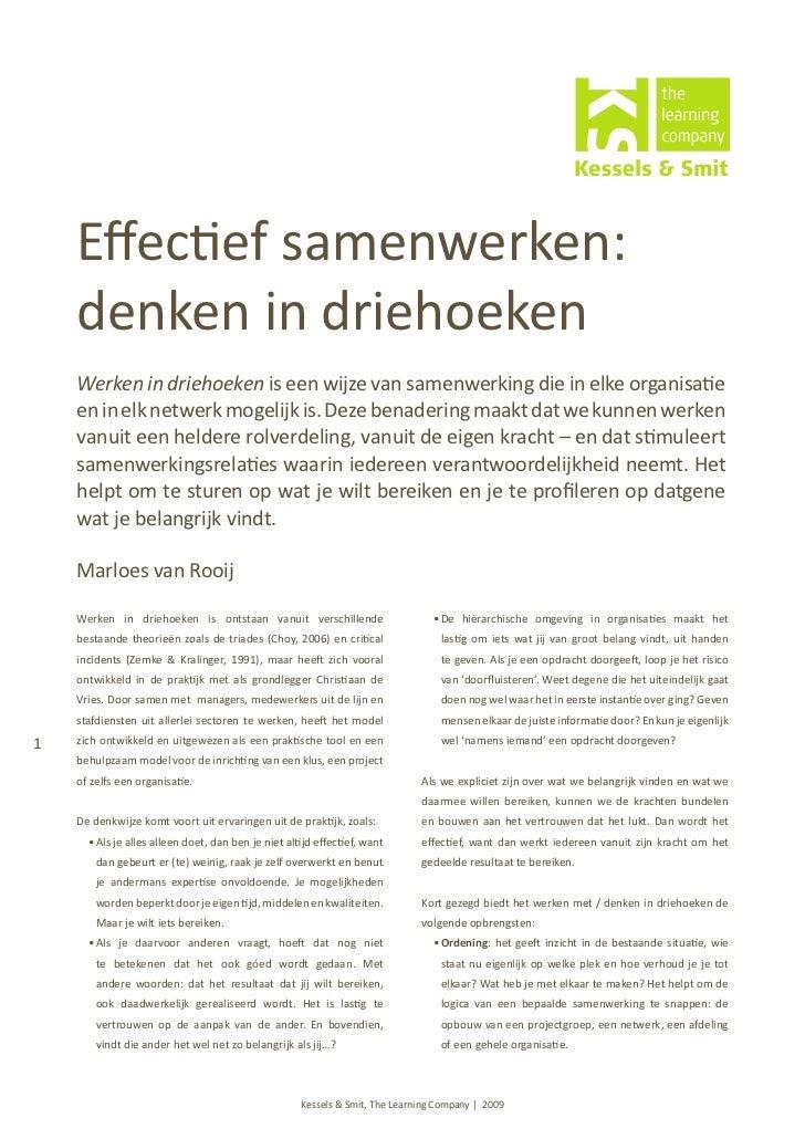 Artikel 2009 effectief samenwerken
