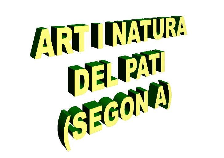 Art i natura del pati 2 a