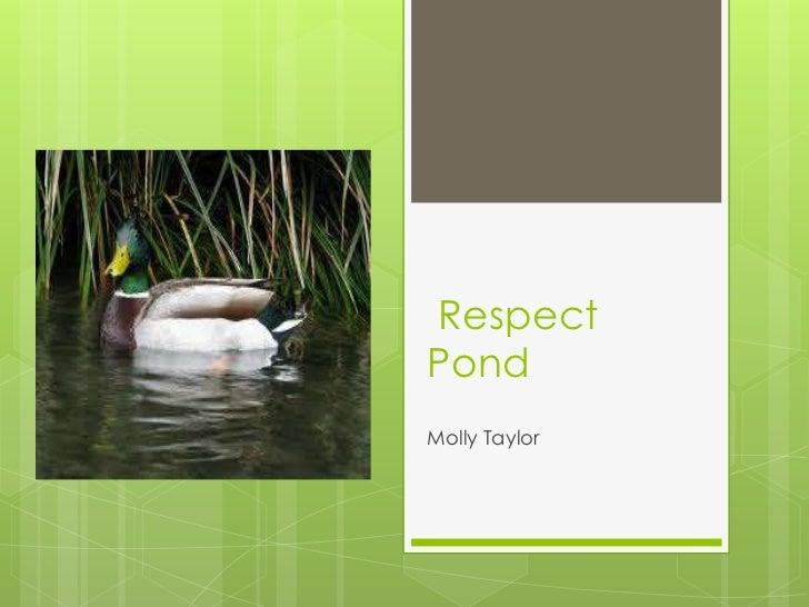 RespectPondMolly Taylor