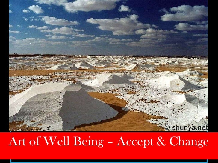 Art of Well Being - Accept and Change