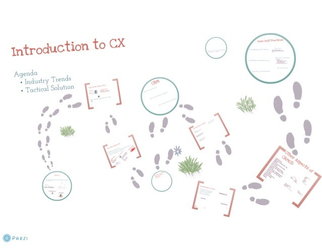 Introduction to CX (Customer Experience)