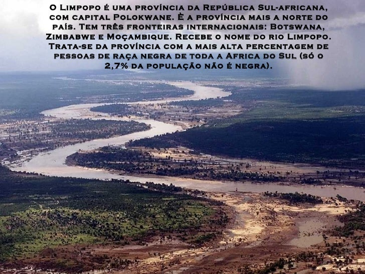 Arvore Do Limpopo