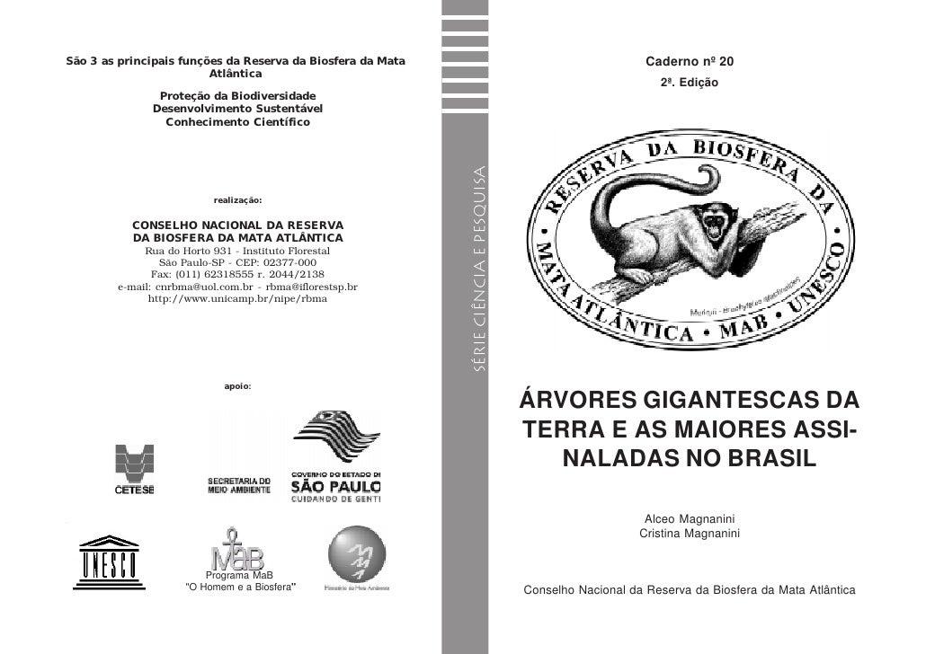 CADERNO Nº. 20 - SÉRIE CIÊNCIA E PESQUISA                                                   ÁRVORES GIGANTESCAS DA TERRA  ...