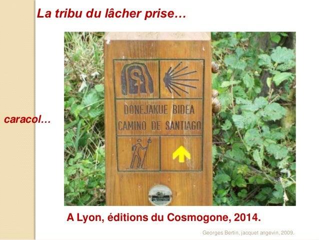 La tribu du lâcher prise…  caracol…  A Lyon, éditions du Cosmogone, 2014.  Georges Bertin, jacquet angevin, 2009.