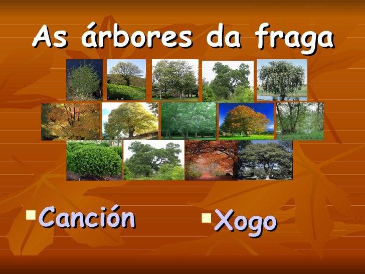 As árbores da fraga <ul><li>Canción </li></ul><ul><li>Xogo </li></ul>