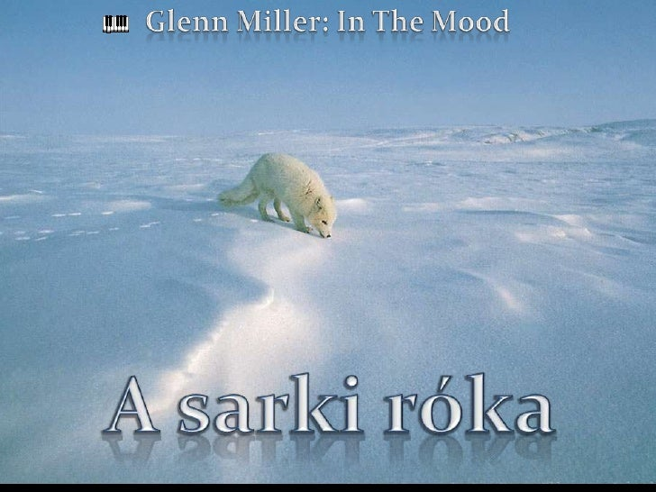 Glenn Miller: In The Mood<br />A sarki róka<br />