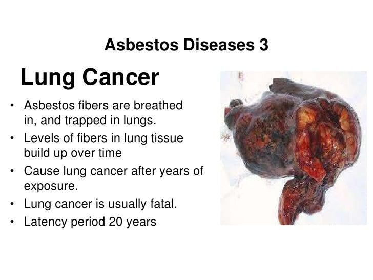 Diagram Of Breathing In Asbestos Fibers : Coordinator at the mesothelioma center asbestos