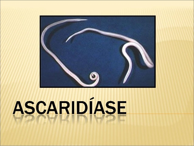  A ascaridíase é uma verminose intestinal, causada pelo parasita Ascaris lumbricóides.  A ascaridíase, popularmente conh...