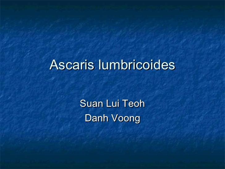 Ascaris lumbricoides    Suan Lui Teoh     Danh Voong