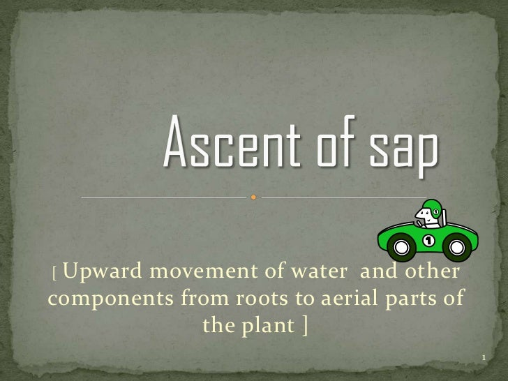 [Upward movement of water and othercomponents from roots to aerial parts of             the plant ]                       ...